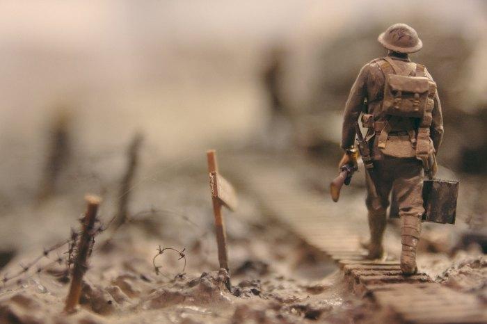 Soldier - stijn-swinnen-259744-unsplash